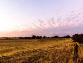 Efficient And Quick Ways to Buy Land in Accra